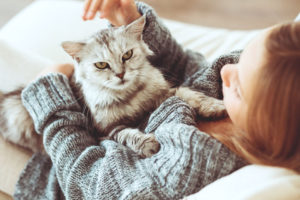cats, pets, dementia, alzheimers