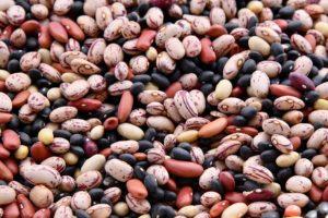 top ten food beans