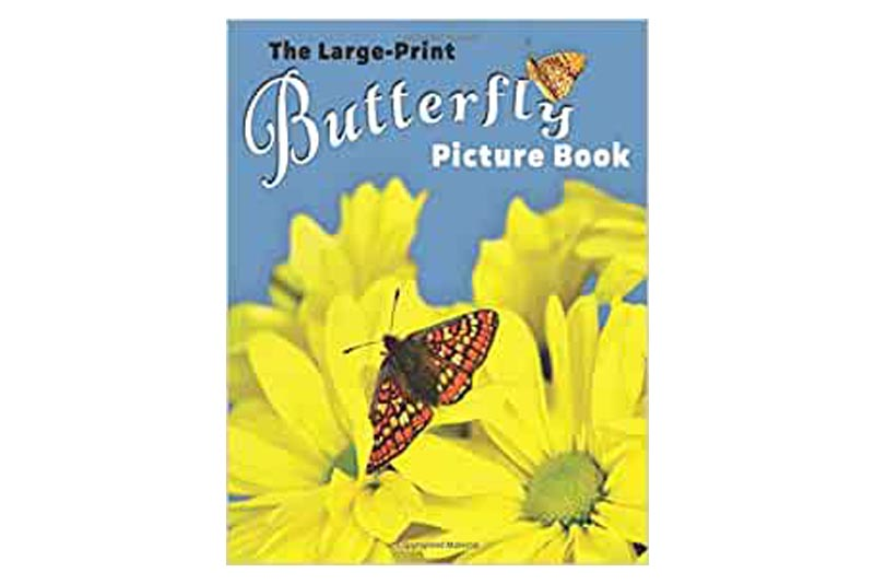 Book Review: The Large-Print Butterfly Picture Book – Lasting Happiness